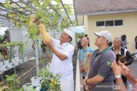 Bupati Bangli dorong milenial kembangkan bisnis hidroponik