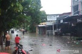 Warga Pangkalpinang diminta waspadai buaya dan ular saat banjir