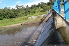 Bendung Pesap Dukung Desa Miau Baru Jadi Lumbung Padi Dua Kecamatan Kutim