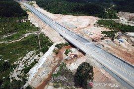 BBKSDA  minta kejelasan progres terowongan gajah Tol Pekanbaru-Dumai