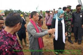 Distan Paser lakukan gerakan tanam jagung dan padi