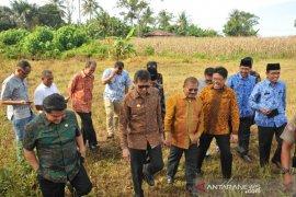 Pembukaan Pekan Nasional KTNA XVI di Padang Pariaman