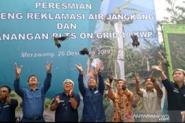 Ratusan burung endemik Bangka Belitung terancam punah dilepasliarkan
