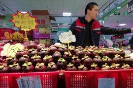 Neraca dagang Indonesia-China, siapa untung siapa buntung