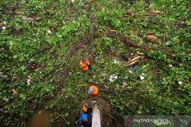 Sampah Hambat Arus Tranportasi Air