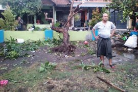 BPBD Sidoarjo waspadai banjir wilayah pesisir