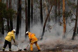 Petugas pemadam kebakaran  Australia meninggal saat bertugas
