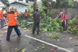 Bupati Klungkung tinjau proyek infrastruktur di Nusa Penida