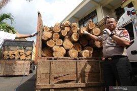 Ungkap pencurian kayu jati perhutani