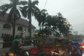 Puluhan tiang listrik dan pohon tumbang di Surabaya
