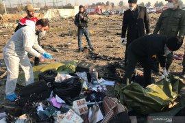 Pesawat jatuh di Iran, semua penumpang tewas termasuk pasangan pengantin baru