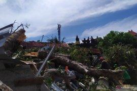 Pohon tumbang timpa tiga rumah di Denpasar