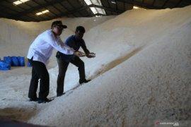 Harga anjlok, ratusan ribu ton garam produksi petani Madura belum terserap