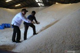 161.665 ton garam produksi Madura tak tertampung di gudang