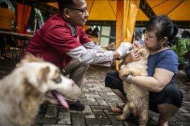Pemeriksaan hewan terdampak banjir