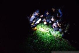 Peneliti Universitas Jember dan Virginia Tech temukan amfibi-reptil hutan di Unej