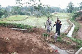 Sawah di Cibolang Cianjur terancam gagal panen akibat pergerakan tanah