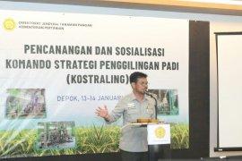 Mentan targetkan ekspor beras 500.000 ton