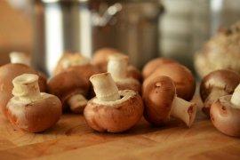 ini khasiat jamur untuk diabetes