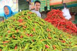 Pedasnya Cabai Hiyung tingkatkan taraf perekonomian masyarakat Hiyung