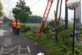 Angin kencang rusak puluhan rumah di Sidoarjo