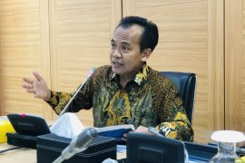 Pemerintah upayakan jaga stabilitas harga bahan pokok