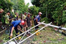 Pohon empat meter tumbang timpa rambu lalu lintas dan jaringan listrik di Menteng