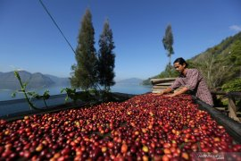 Atase: Produk pertanian Indonesia berpeluang besar ekspor ke Jepang