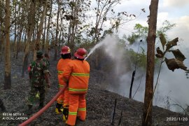 Dua hektare lahan semak belukar hangus terbakar di Aceh Tenggara
