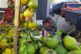 Jeruk Bali marak di jual di Bandarlampung jelang Imlek
