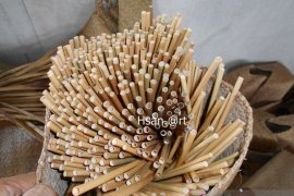 S Kalimantan's HSU produces nonplastic straw to meet Dutch's demand