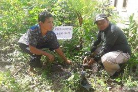 Mangrove Tanjungpunai jadi destinasi wisata baru di Bangka Barat