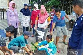 BPDASHL Babel salurkan bantuan bibit tanaman buah