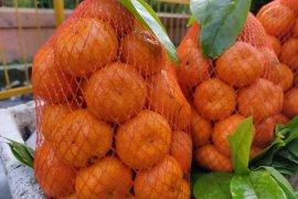 Ahli: Konsumsi buah kaya vitamin C tingkatkan kekebalan tubuh