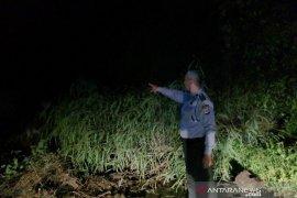 Jalur Bandung-Cianjur lumpuh total karena longsor