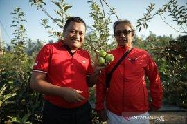 Bupati Gianyar dukung budi daya apel di Tampak Siring
