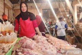 Harga ayam potong di Bengkulu Rp28 ribu per kilogram
