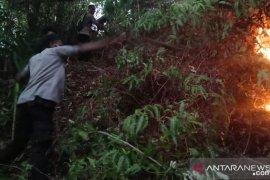Karhutla di Kecamatan Leihitu hanguskan tanaman cengkah dan pala