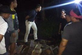 """TNI-Polri Buleleng tangkap pelaku """"Illegal Logging"""""""