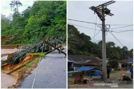 12 tiang PLN tumbang akibat banjir yang terjadi di Tapteng