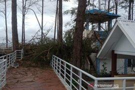 Taman Pasir Putih rusak  ditimpa pohon tumbang
