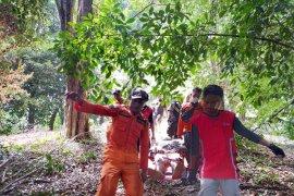 Basarnas : suami istri hilang di hutan Ternate ditemukan selamat