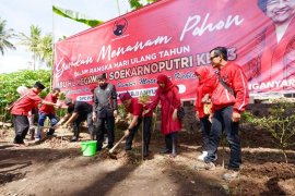 Kader PDIP Banyuwangi gelar tanam pohon di kampung wisata