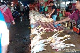 Harga ayam kampung dan ikan segar di Ambon melonjak
