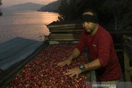 Angka ekspor Aceh alami peningkatan 14,64 persen pada Desember