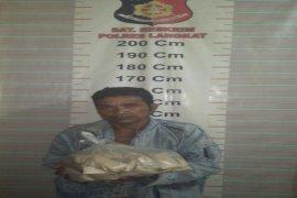 Miliki 500 gram ganja, Wak Ron ditangkap Polisi Salapian Langkat