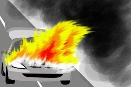 Waduh, mobil mewah pedangdut Via Vallen dibakar orang