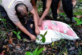 Dalam 10 jam polisi tangkap pembunuh wanita yang mayatnya dimasukan dalam karung