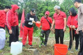 Plt Wali Kota Medan  apresiasi penanaman 5 ribu pohon