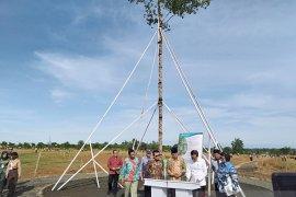 Presiden Jokowi tanam Marsawa di Hutan Pers